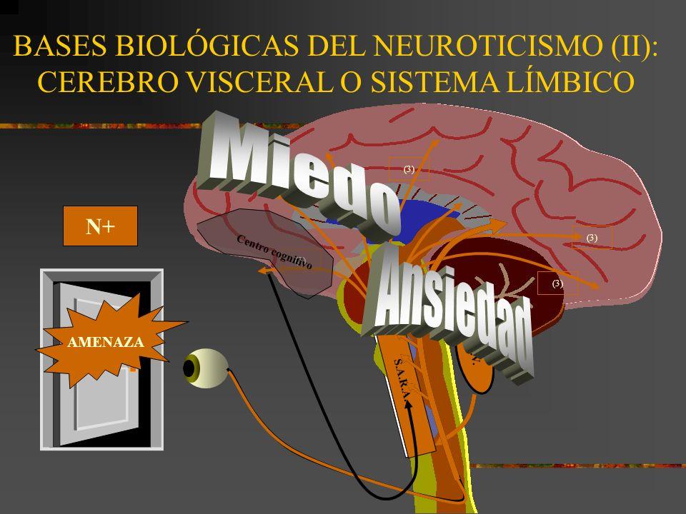 BASES BIOLÓGICAS DEL NEUROTICISMO (II): CEREBRO VISCERAL O SISTEMA LÍMBICO