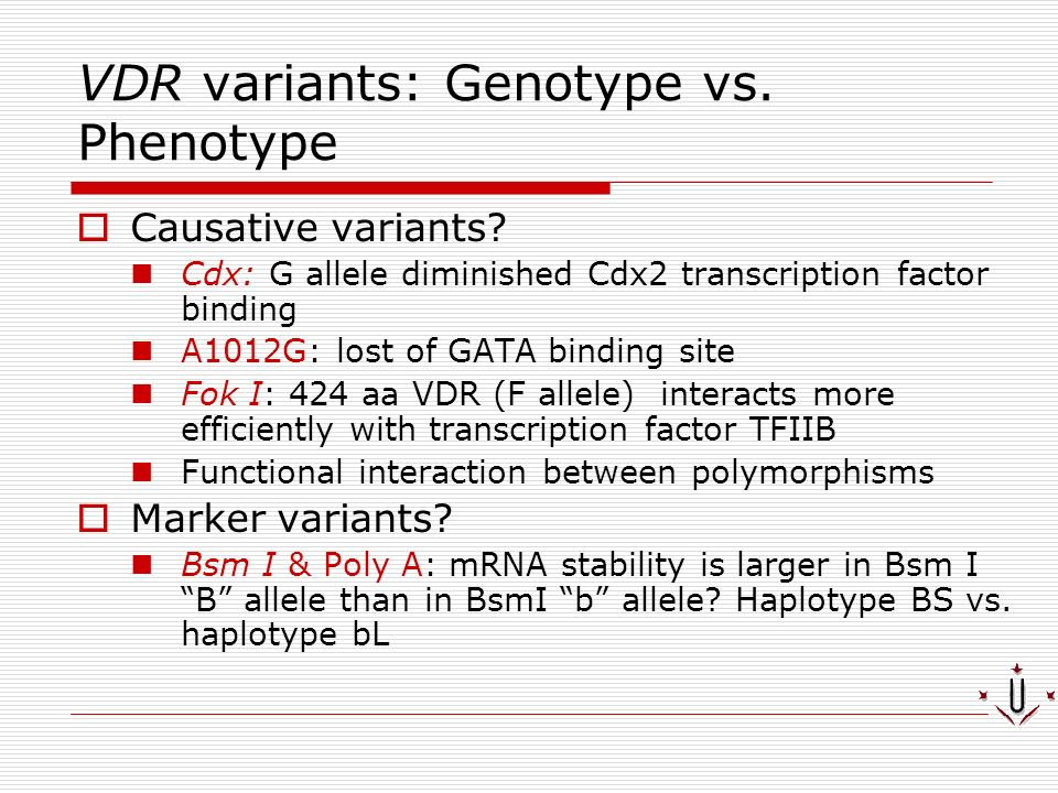 VDR variants: Genotype vs. Phenotype