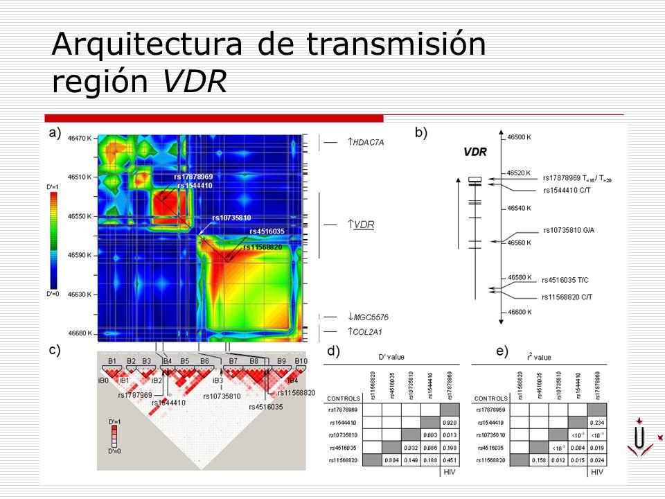 Arquitectura de transmisión región VDR