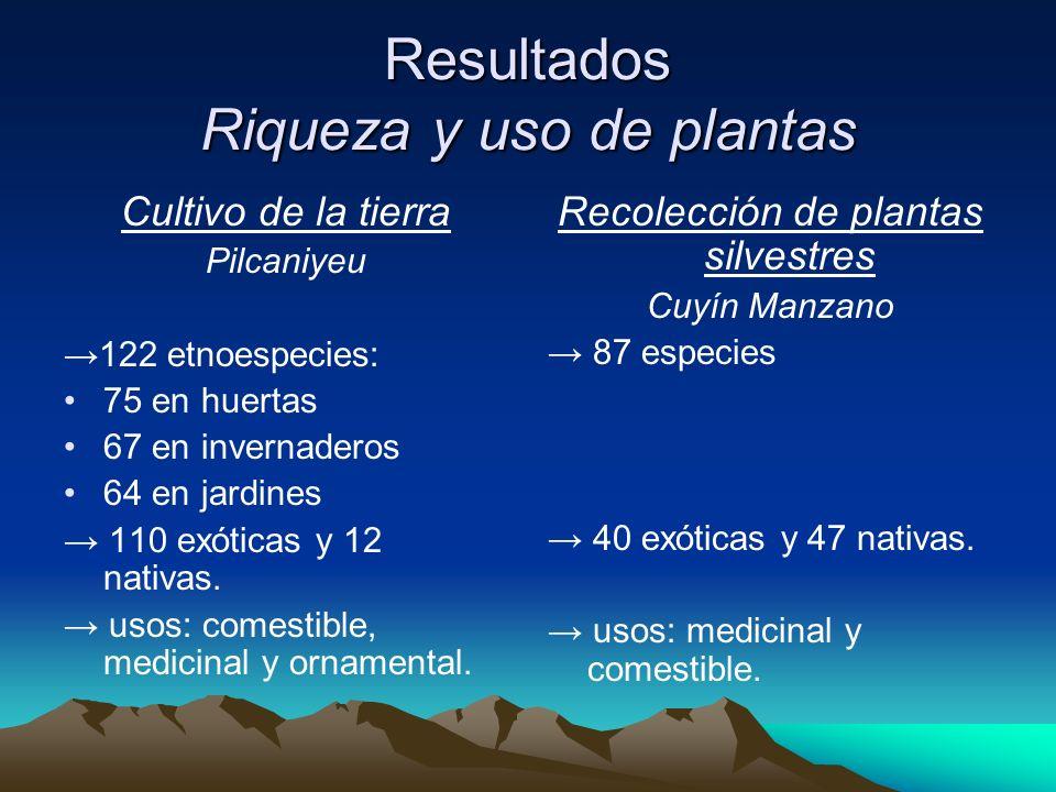 Resultados Riqueza y uso de plantas