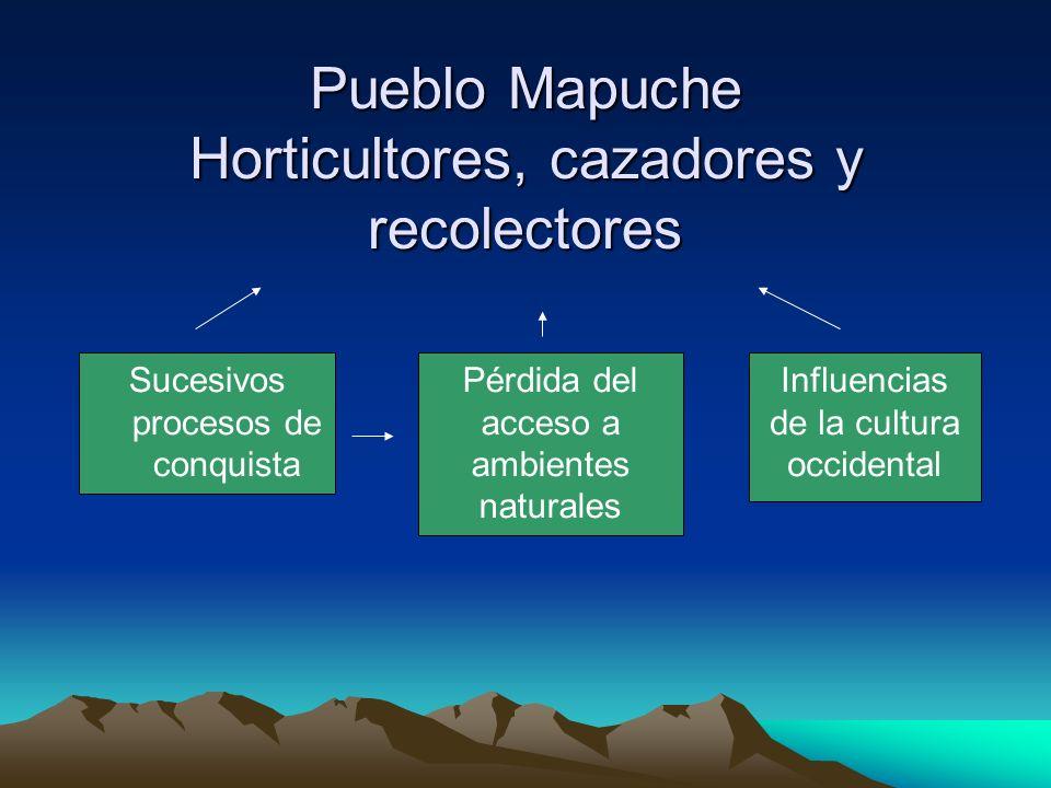 Pueblo Mapuche Horticultores, cazadores y recolectores