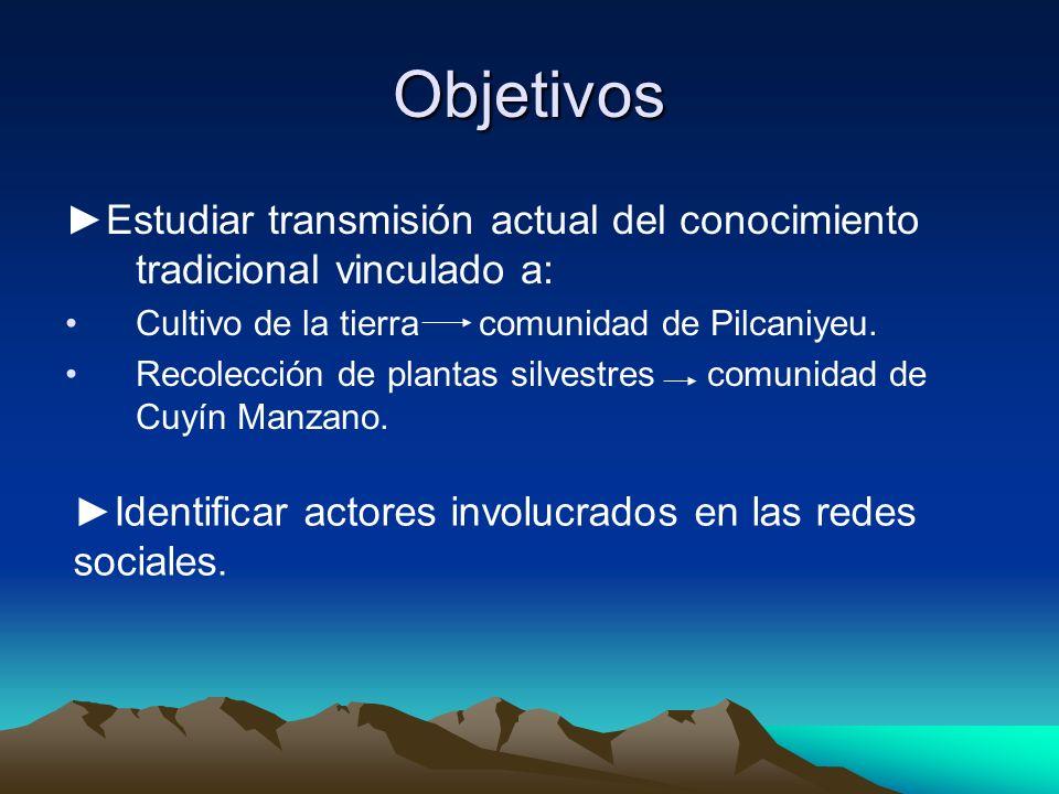 Objetivos ►Estudiar transmisión actual del conocimiento tradicional vinculado a: Cultivo de la tierra comunidad de Pilcaniyeu.