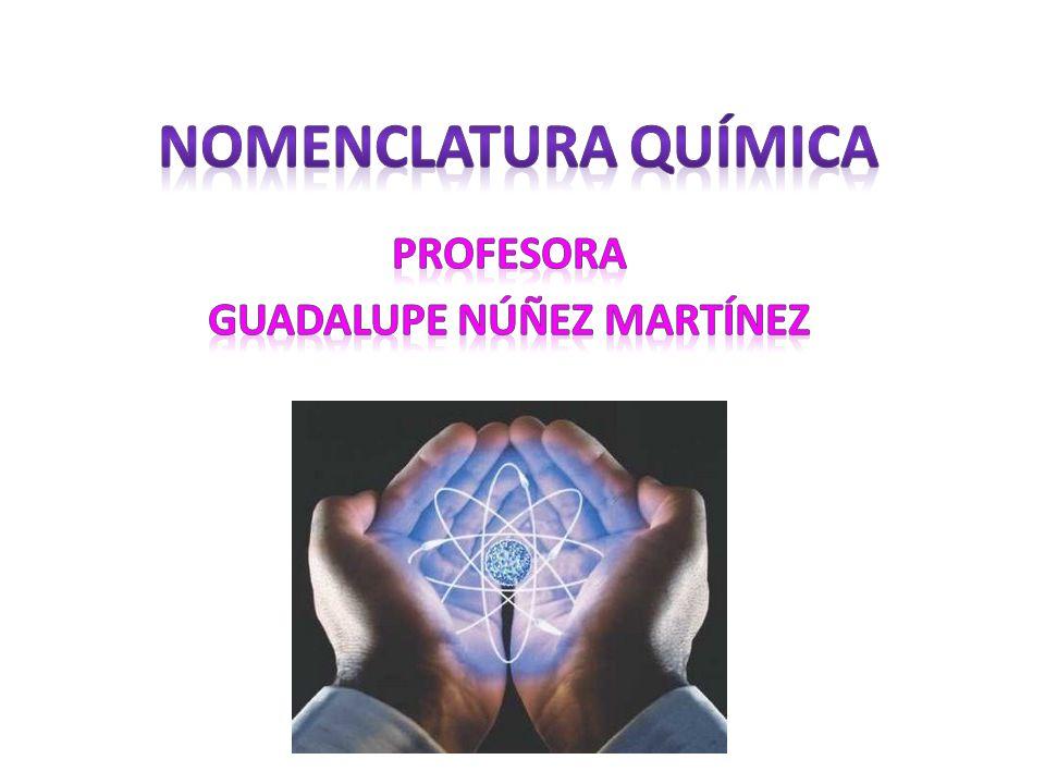 Profesora Guadalupe Núñez Martínez