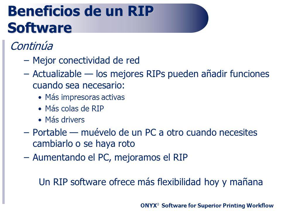 Beneficios de un RIP Software