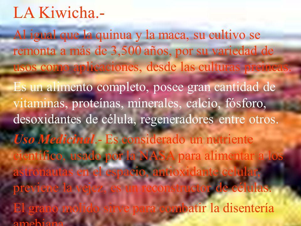 LA Kiwicha.-
