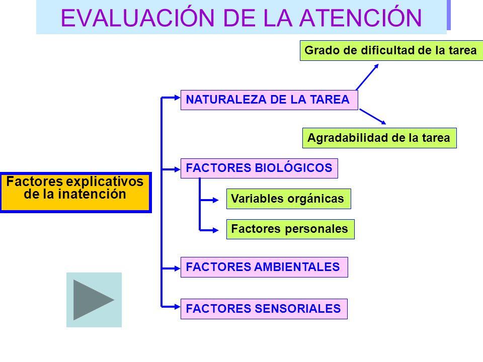 EVALUACIÓN DE LA ATENCIÓN