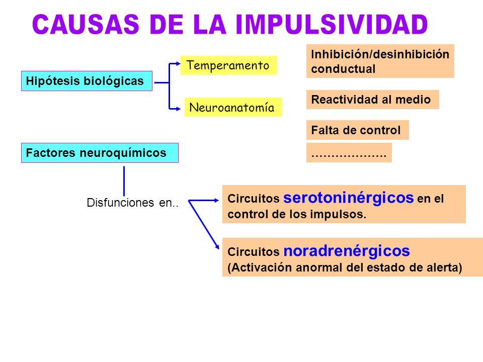 CAUSAS DE LA IMPULSIVIDAD
