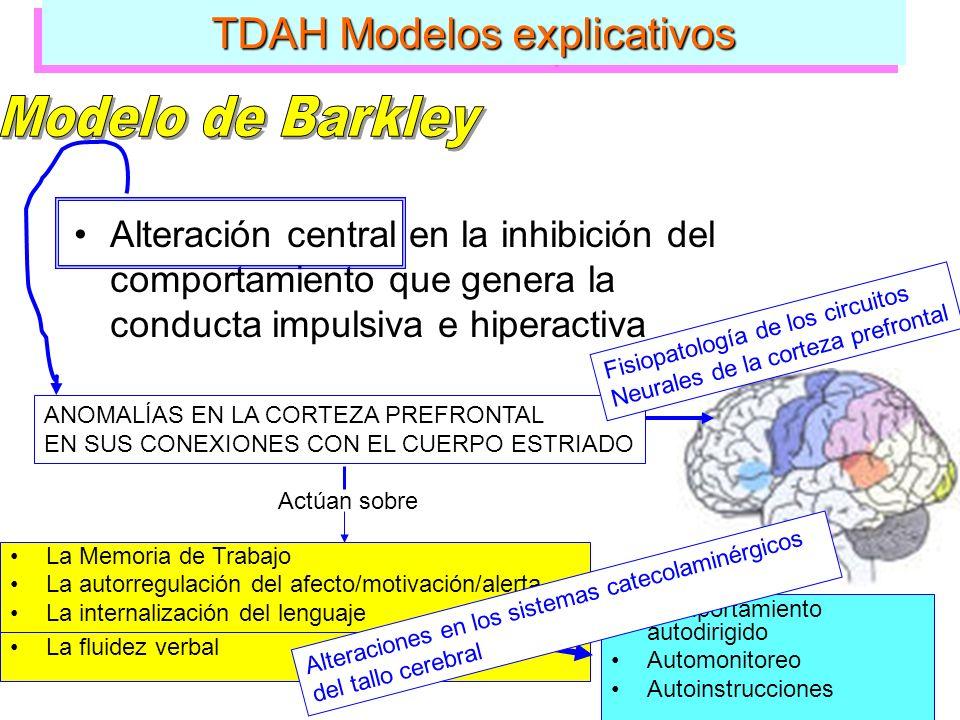 TDAH Modelos explicativos