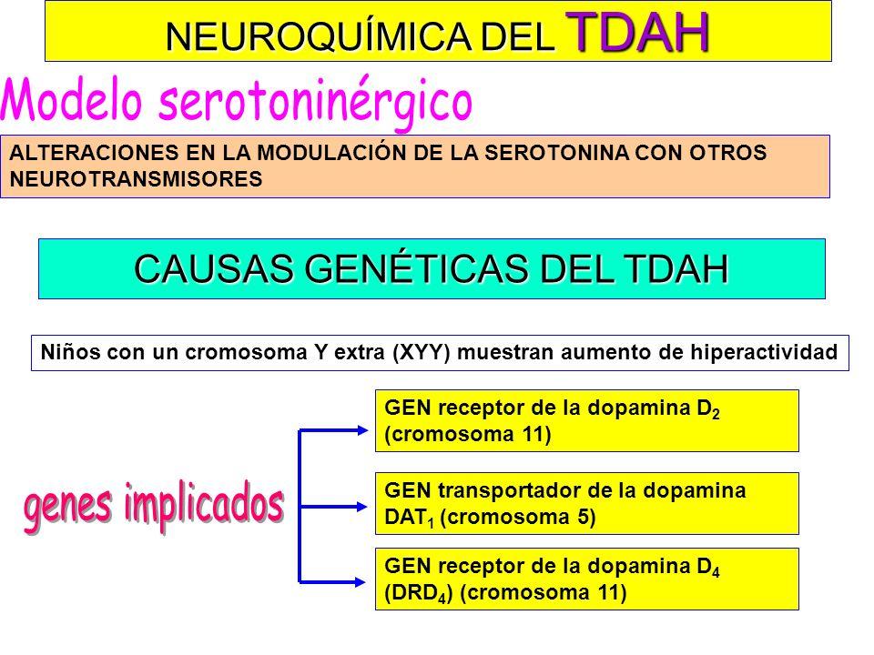 Modelo serotoninérgico