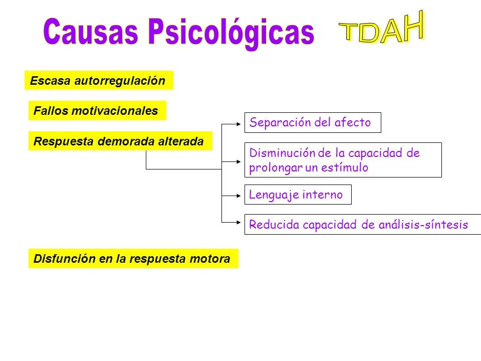 TDAH Causas Psicológicas Escasa autorregulación Fallos motivacionales