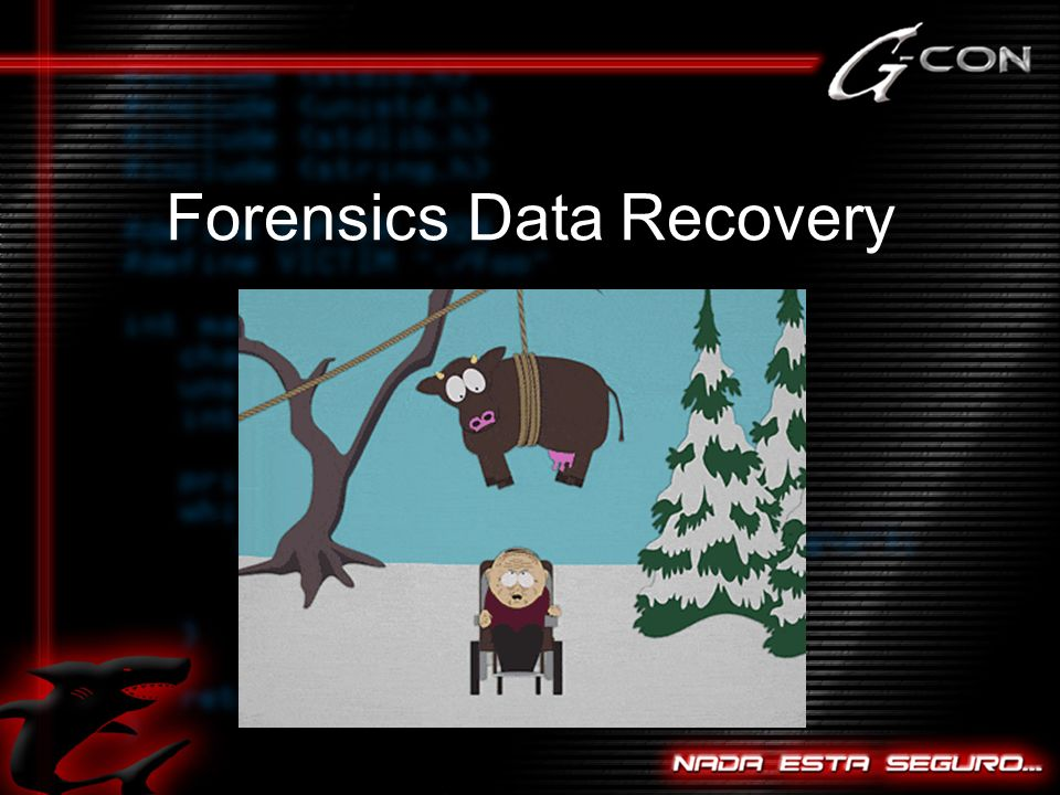 Forensics Data Recovery