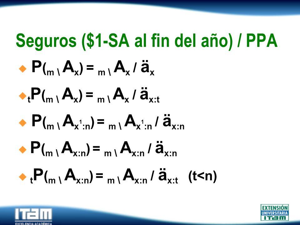 Seguros ($1-SA al fin del año) / PPA