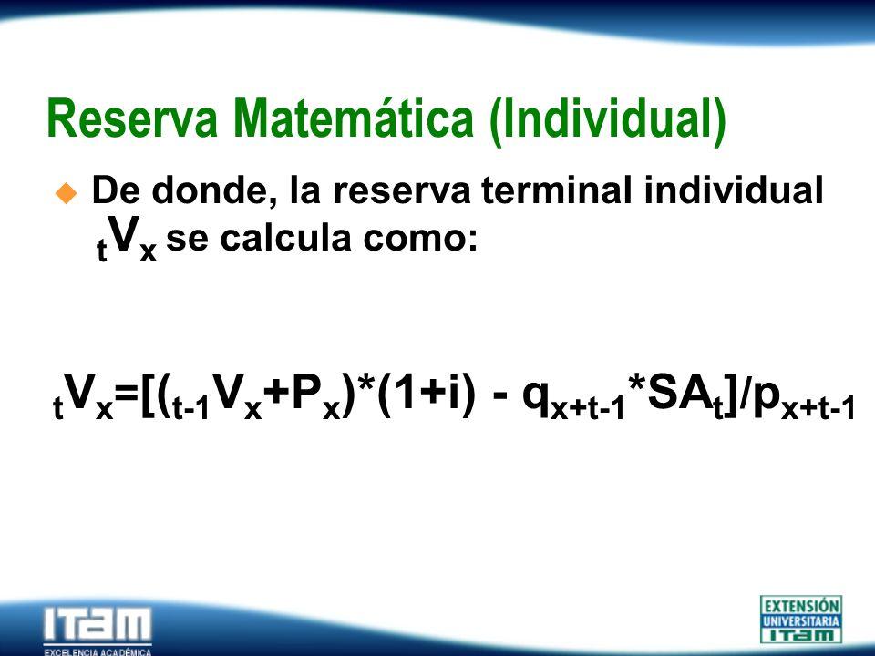 Reserva Matemática (Individual)