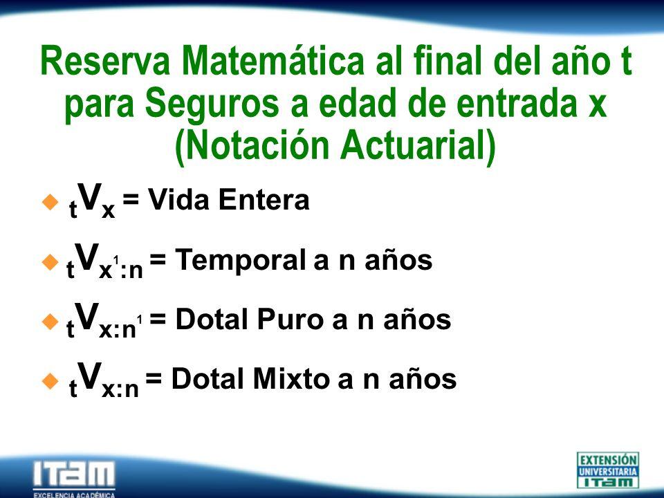 Reserva Matemática al final del año t para Seguros a edad de entrada x (Notación Actuarial)