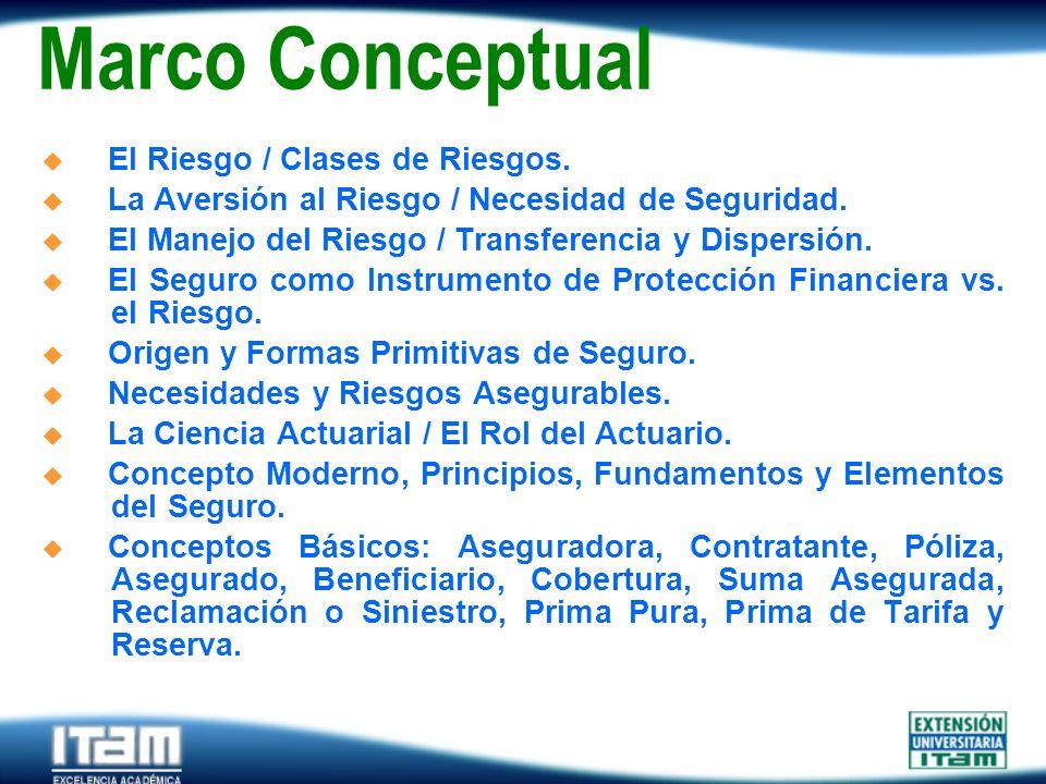Marco Conceptual El Riesgo / Clases de Riesgos.