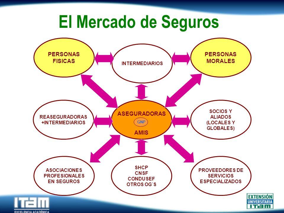 El Mercado de Seguros ASEGURADORAS AMIS PERSONAS FISICAS MORALES