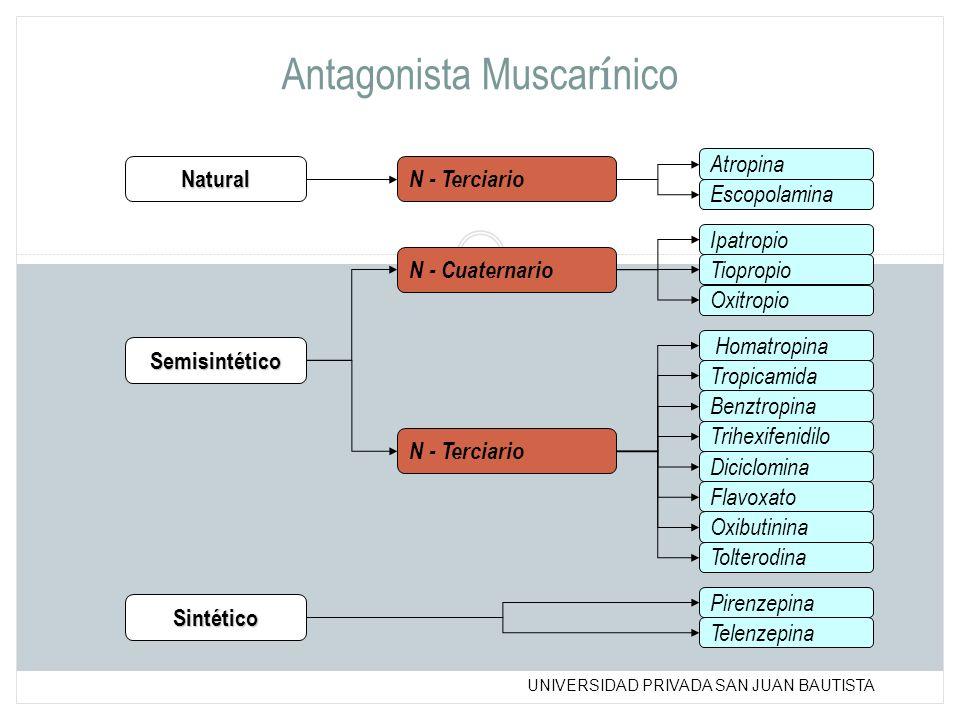 Antagonista Muscarínico