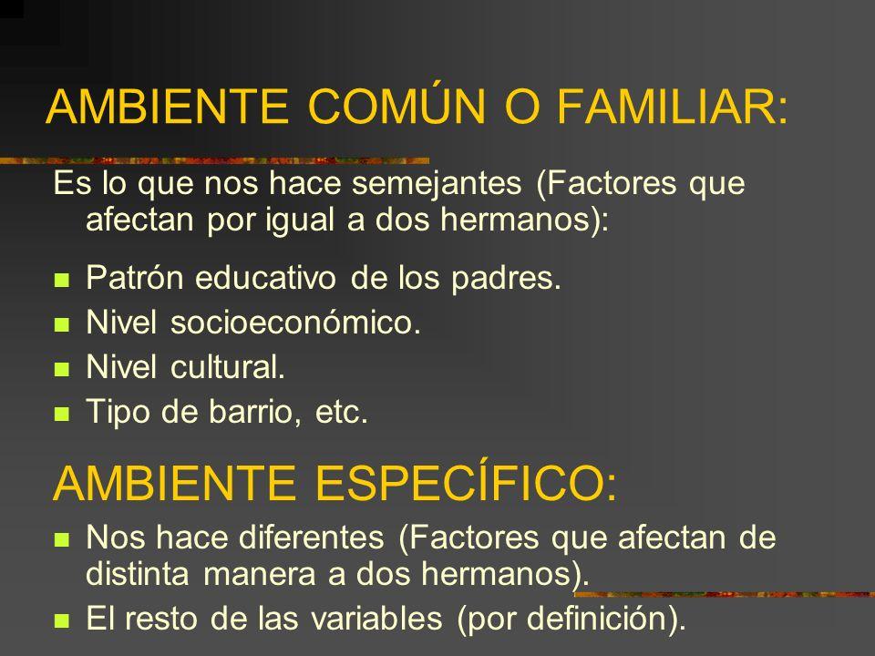 AMBIENTE COMÚN O FAMILIAR: