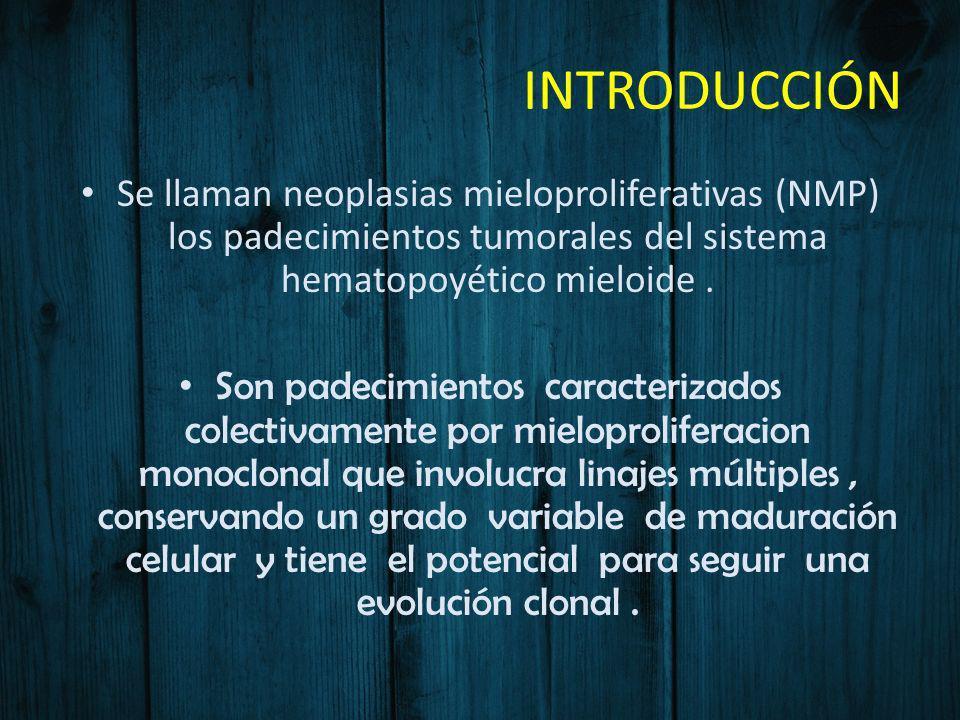 INTRODUCCIÓN Se llaman neoplasias mieloproliferativas (NMP) los padecimientos tumorales del sistema hematopoyético mieloide .
