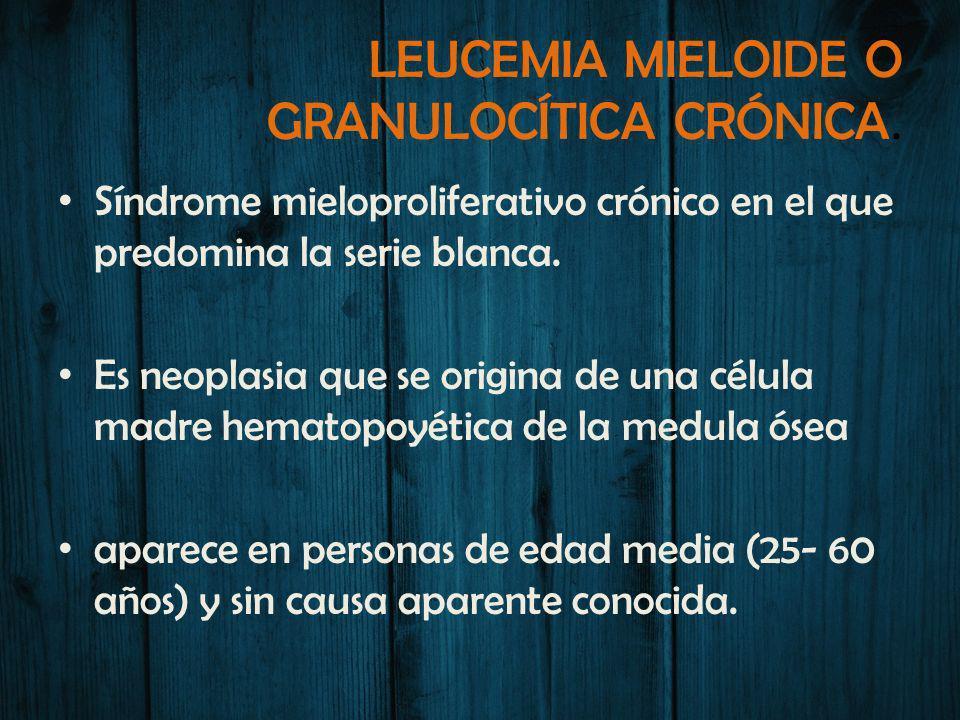 LEUCEMIA MIELOIDE O GRANULOCÍTICA CRÓNICA.