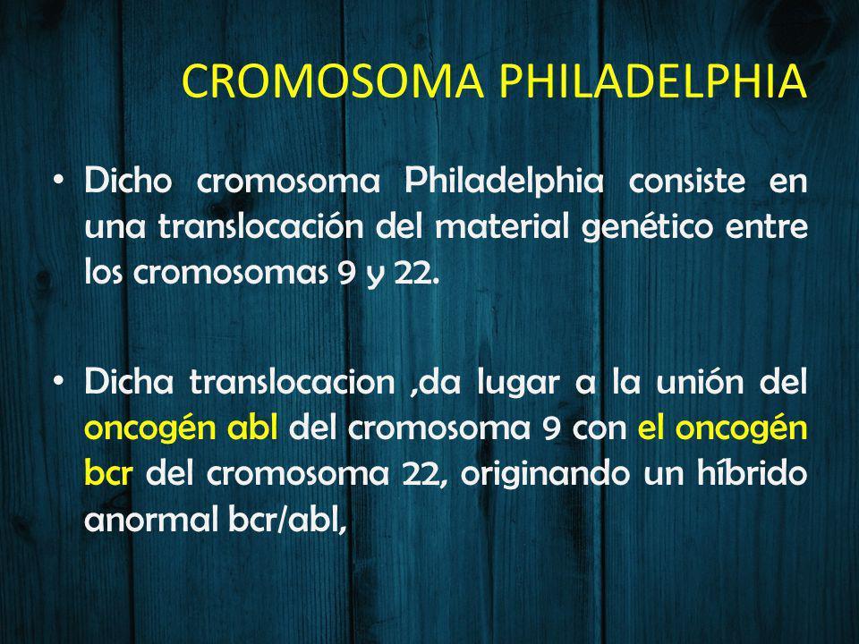 CROMOSOMA PHILADELPHIA