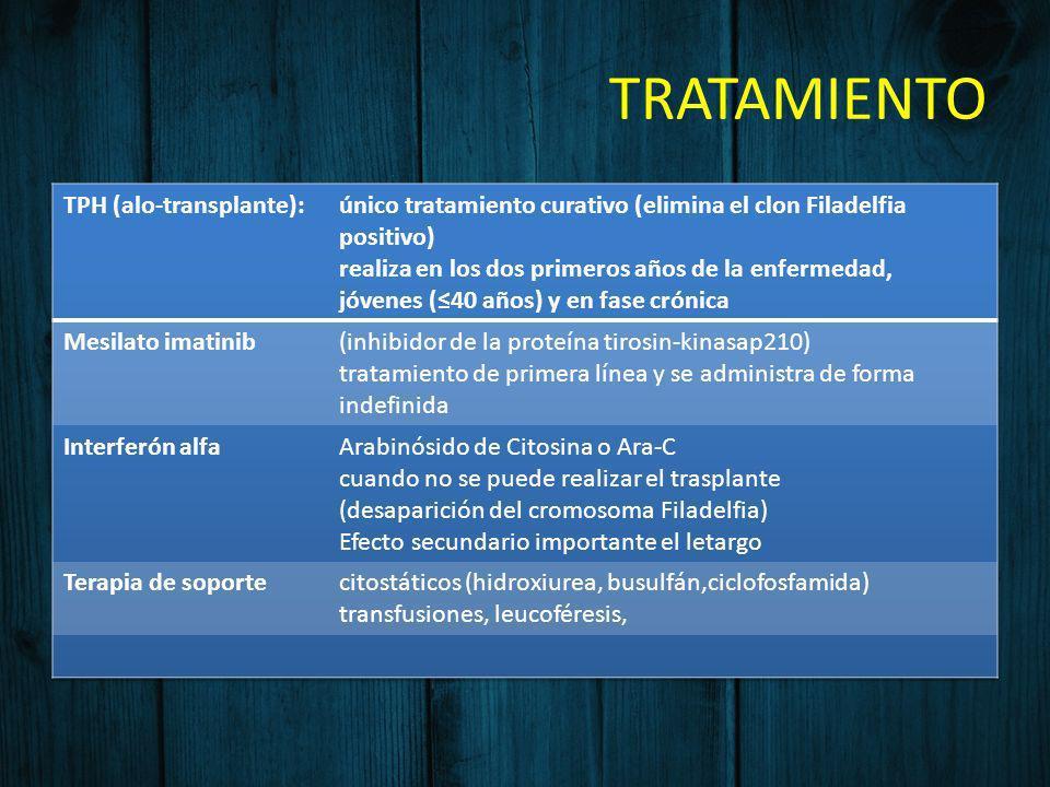 TRATAMIENTO TPH (alo-transplante):