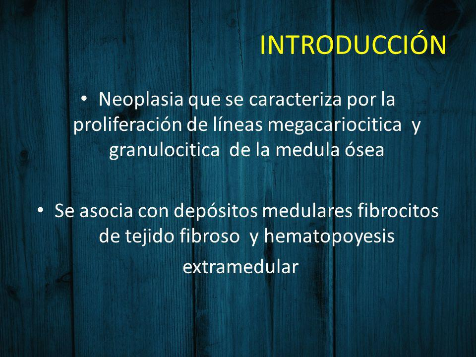 INTRODUCCIÓNNeoplasia que se caracteriza por la proliferación de líneas megacariocitica y granulocitica de la medula ósea.