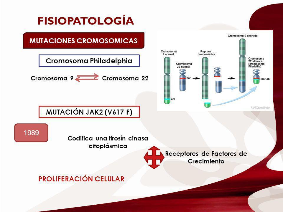 FISIOPATOLOGÍA MUTACIONES CROMOSOMICAS Cromosoma Philadelphia