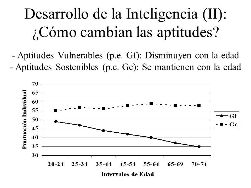 Desarrollo de la Inteligencia (II): ¿Cómo cambian las aptitudes