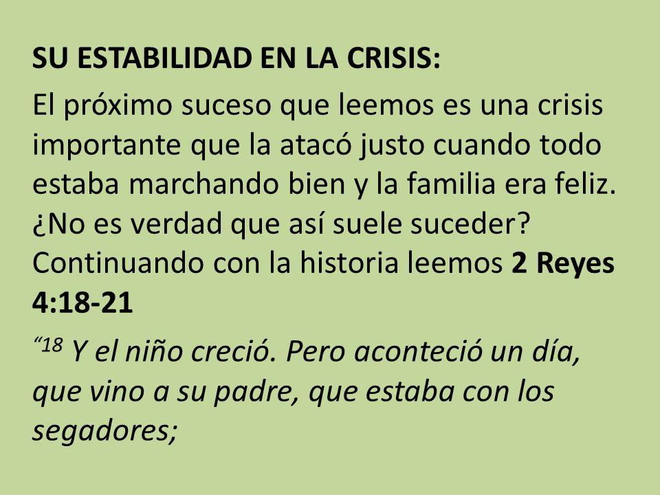 SU ESTABILIDAD EN LA CRISIS: