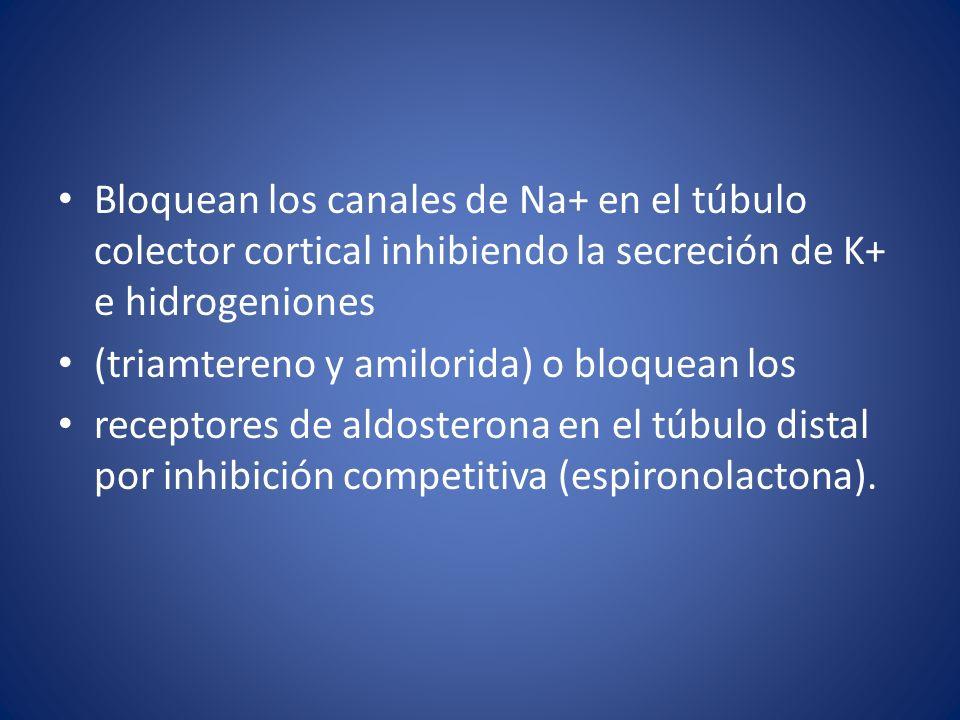 Bloquean los canales de Na+ en el túbulo colector cortical inhibiendo la secreción de K+ e hidrogeniones