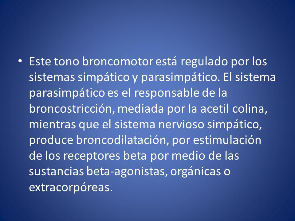 Este tono broncomotor está regulado por los sistemas simpático y parasimpático.