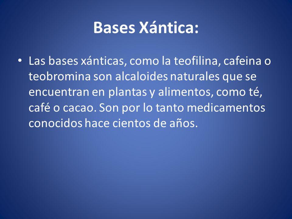 Bases Xántica: