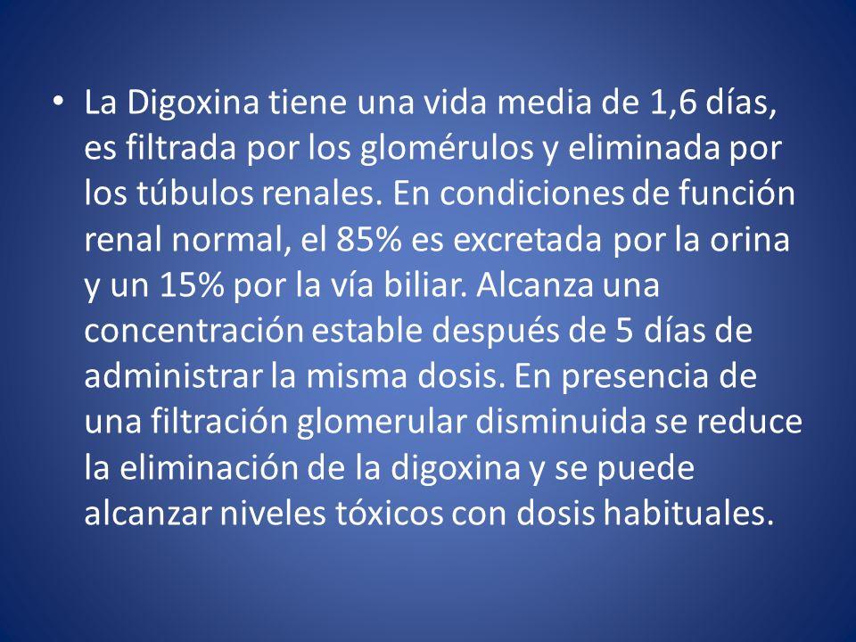 La Digoxina tiene una vida media de 1,6 días, es filtrada por los glomérulos y eliminada por los túbulos renales.