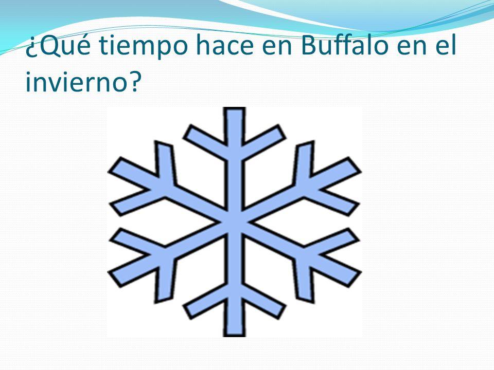 ¿Qué tiempo hace en Buffalo en el invierno