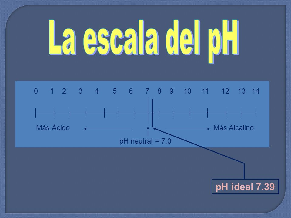 La escala del pH pH ideal 7.39 0 1 2 3 4 5 6 7 8 9 10 11 12 13 14