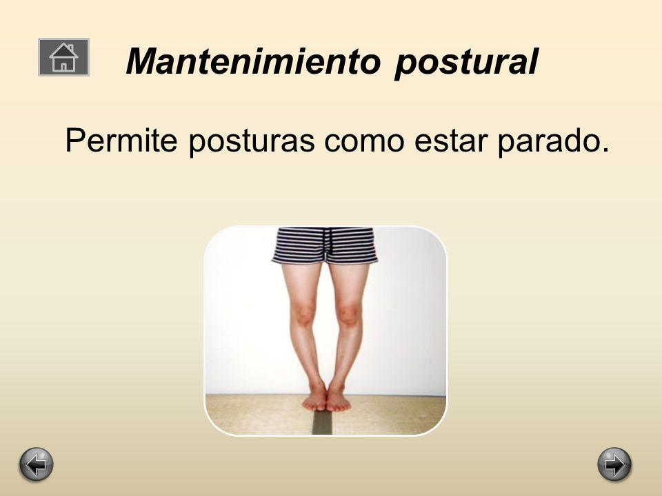 Mantenimiento postural