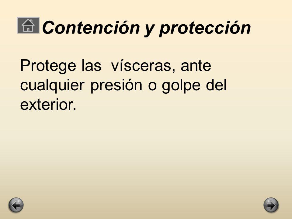 Contención y protección