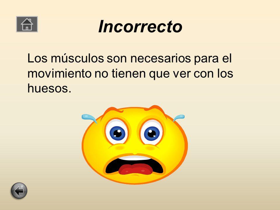 Incorrecto Los músculos son necesarios para el movimiento no tienen que ver con los huesos.