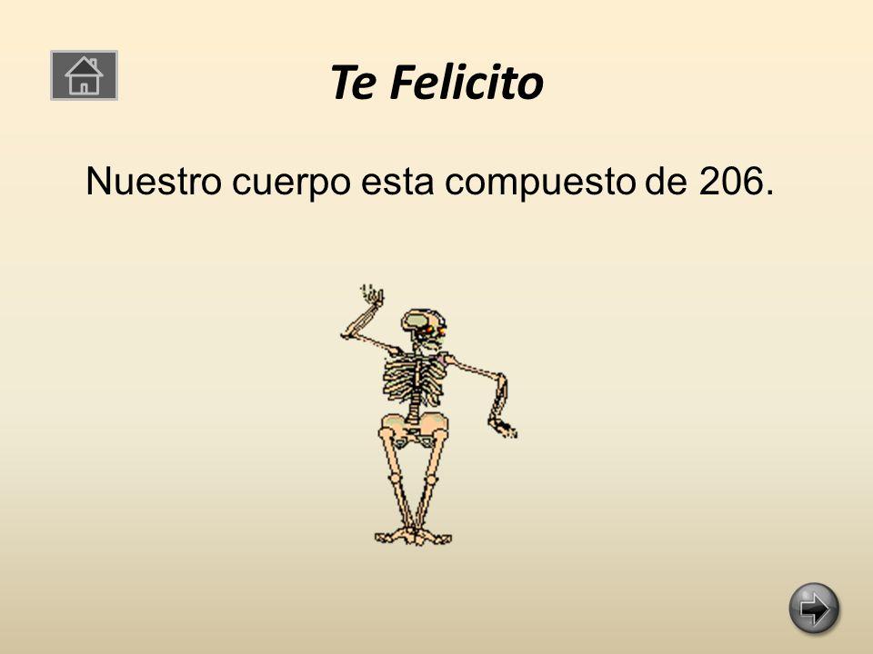 Te Felicito Nuestro cuerpo esta compuesto de 206.