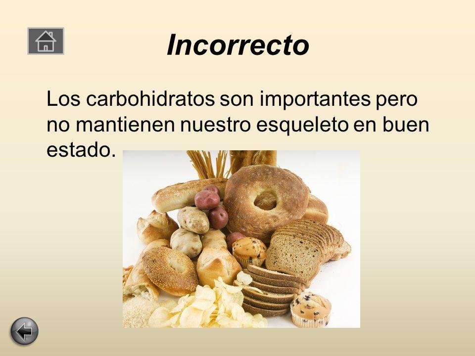 Incorrecto Los carbohidratos son importantes pero no mantienen nuestro esqueleto en buen estado.