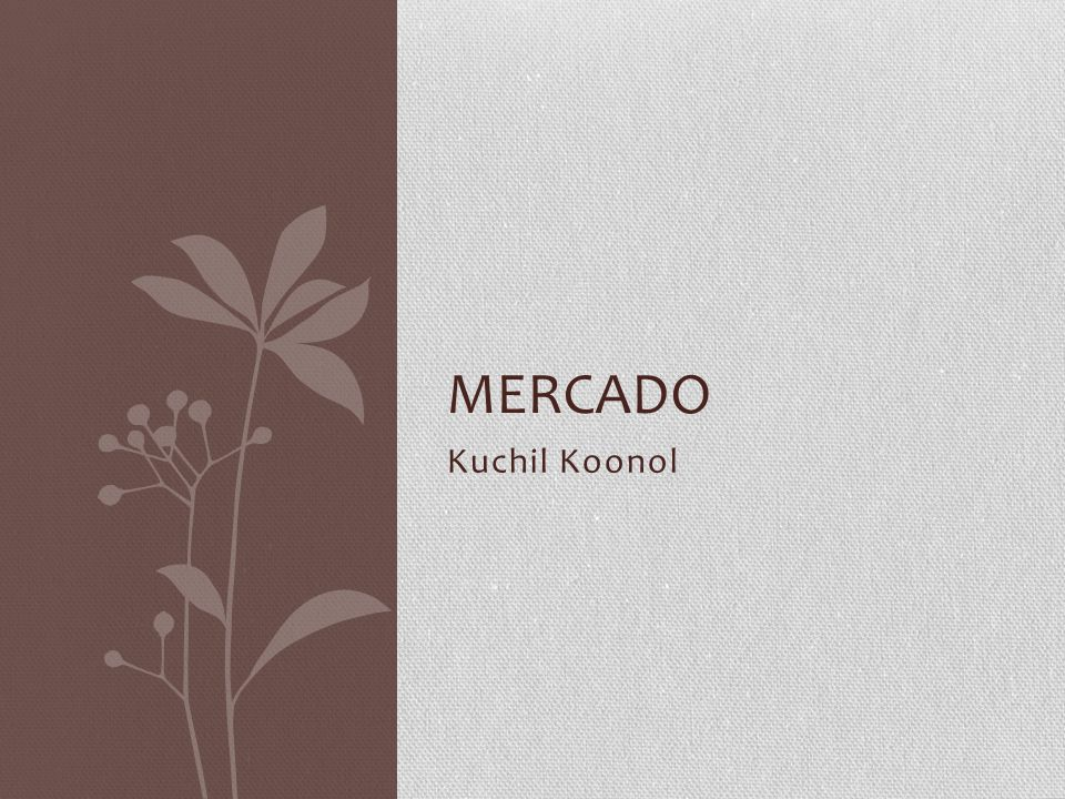 Mercado Kuchil Koonol