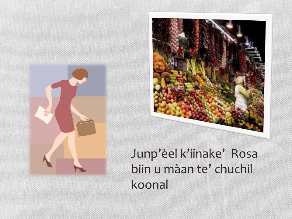 Junp'èel k'iinake' Rosa biin u màan te' chuchil koonal