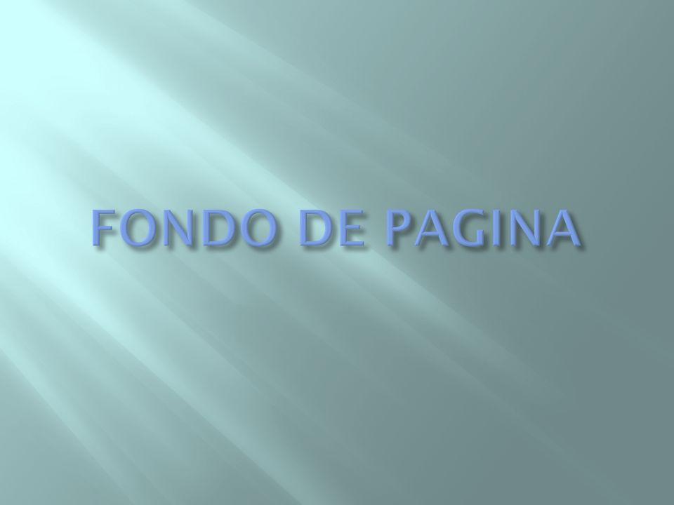 FONDO DE PAGINA
