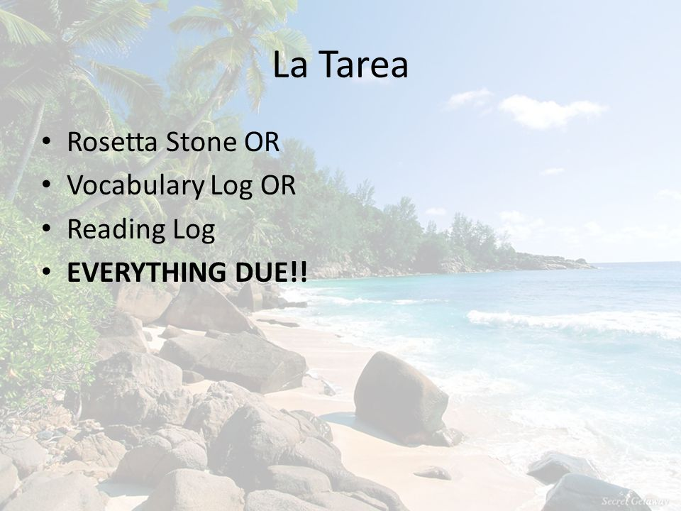La Tarea Rosetta Stone OR Vocabulary Log OR Reading Log