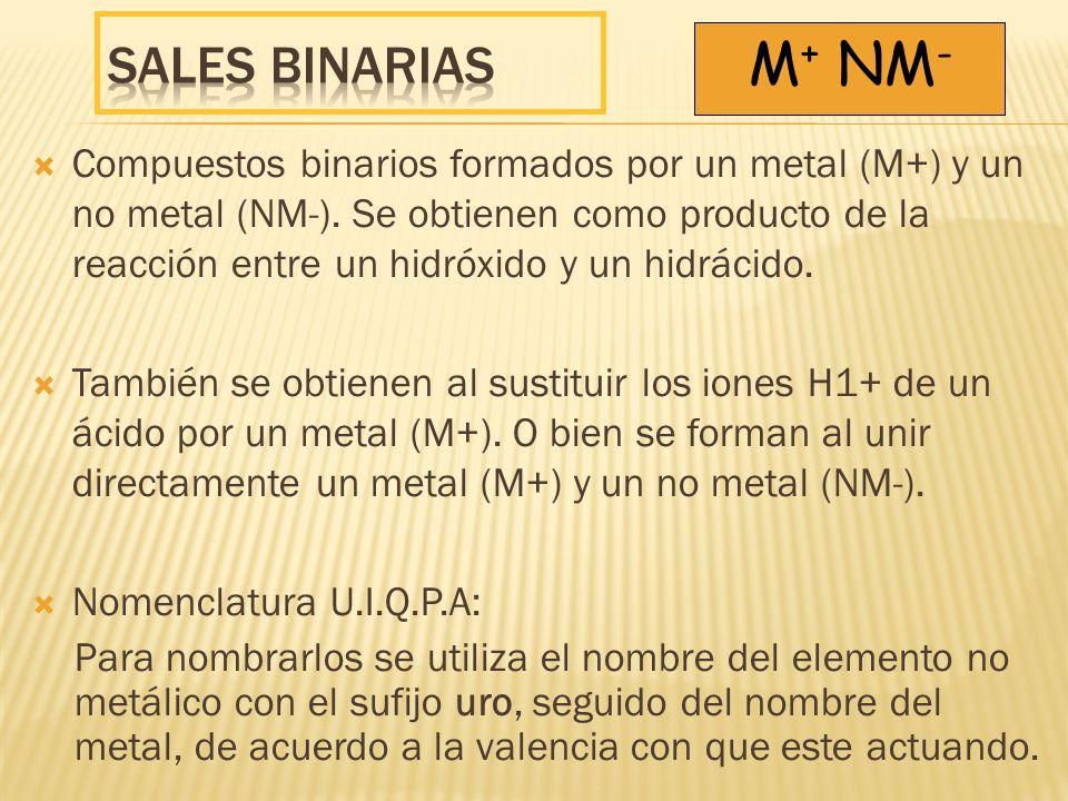 Sales binarias M+ NM-