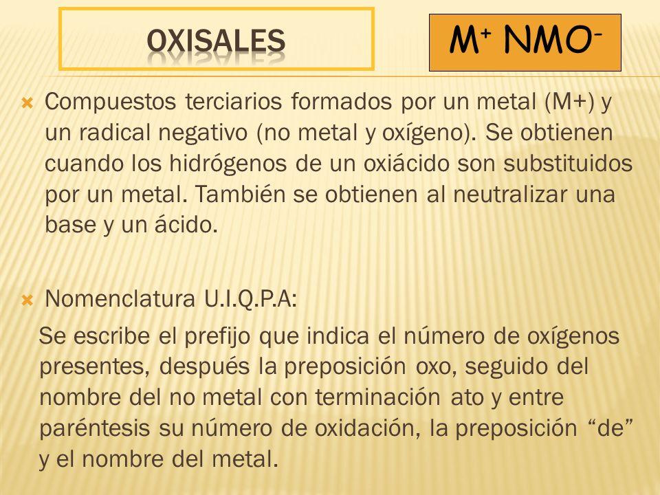 OXISales M+ NMO-