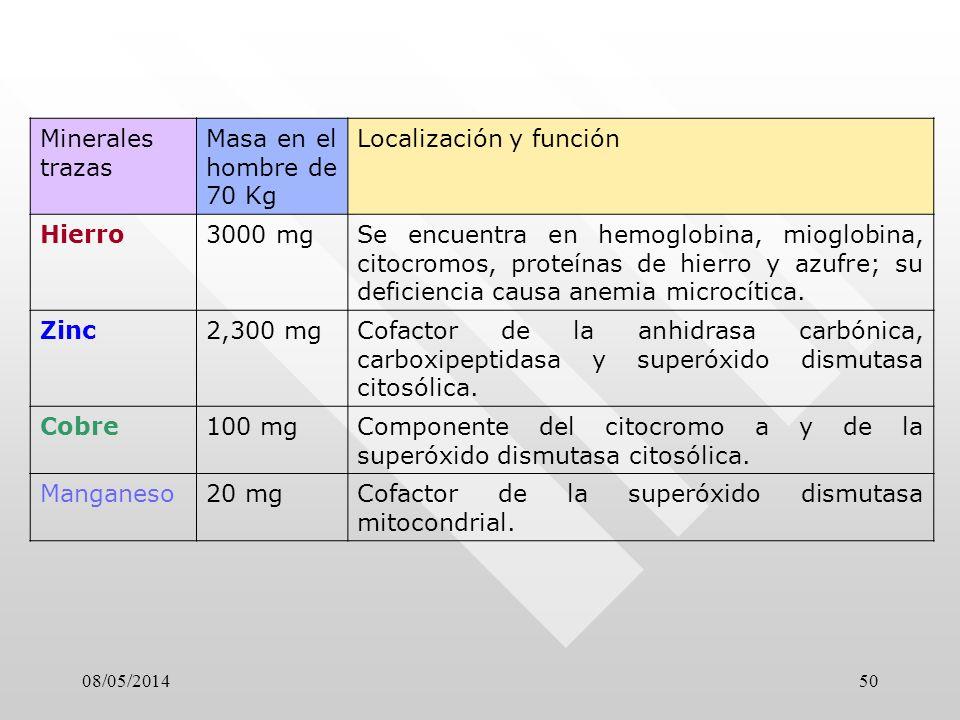 Localización y función