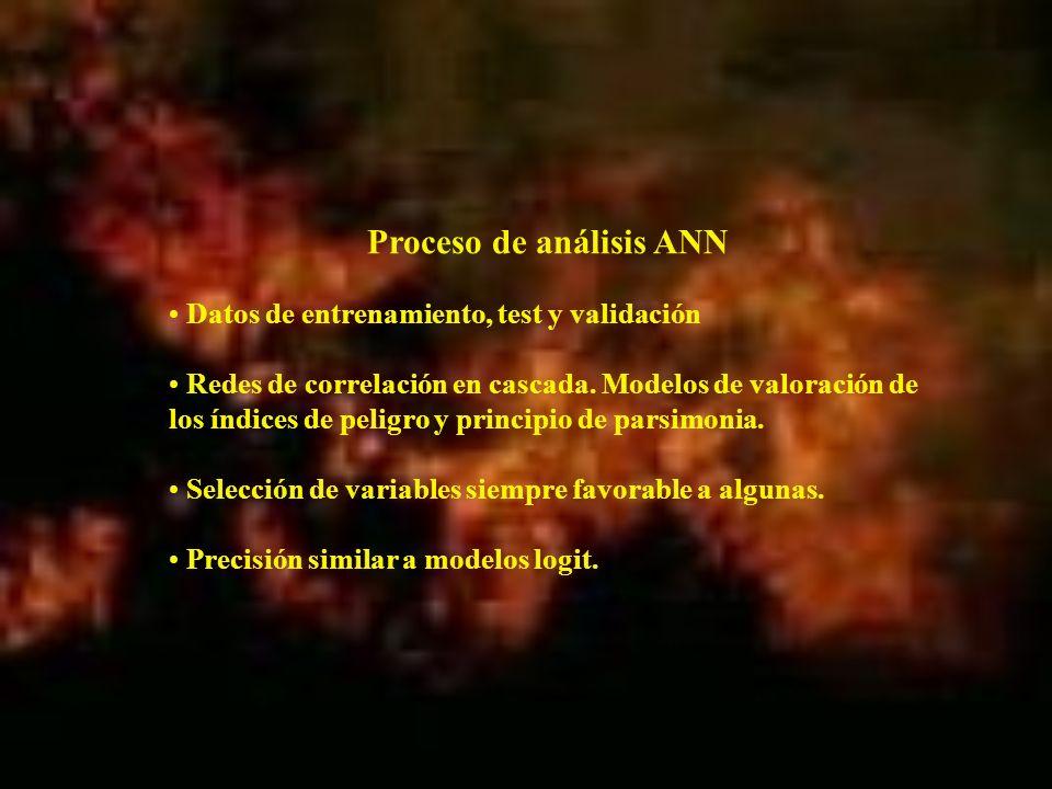 Proceso de análisis ANN