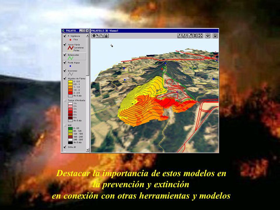 Destacar la importancia de estos modelos en la prevención y extinción